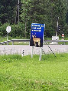 Achtung, Wild!