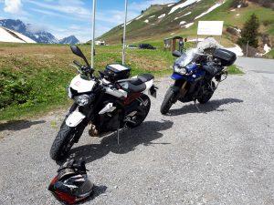 Streety und Großkatze am Hochtannbergpass