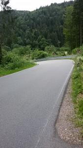 schwarzwald-kurven1