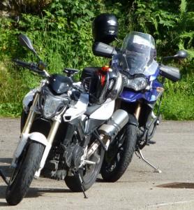 tiger-und-r-profilbild
